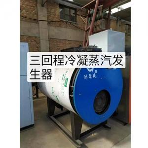 生物质颗粒蒸汽发生器安装